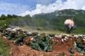 Tribina: Košare, bitka koja traje - Gradska kuća - Velika većnica