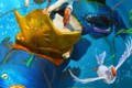 Animirani film: Sadko - avantura pod morem