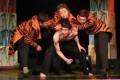 Predstava za decu: Tigris Peter - Dečje pozorište