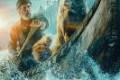 Film: Zov divljine