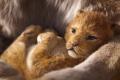 Pretpremijera: Kralj lavova - 3D