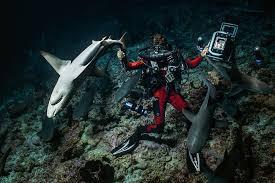 Festival podvodnog filma