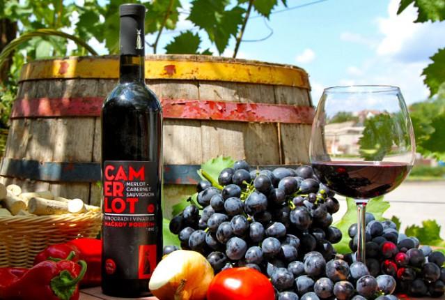 Degustacija vina podruma Mačkov