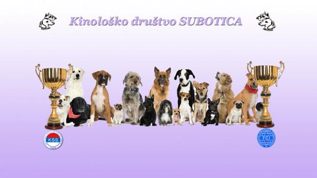 Međunarodna izložba pasa
