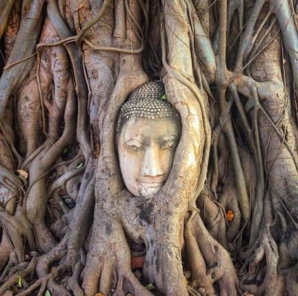 Klub putnika: Tajland - Jedno meditativno putovanje