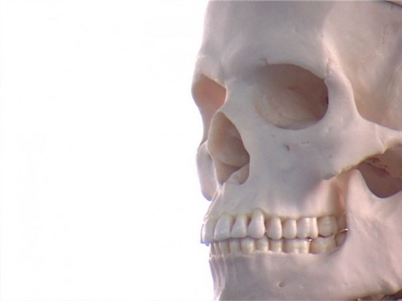 Donacija skeleta Medicinskoj školi