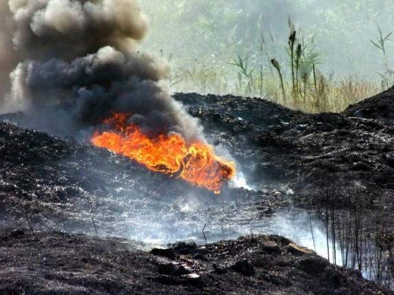 Azilanti izazvali požar na Deponiji?