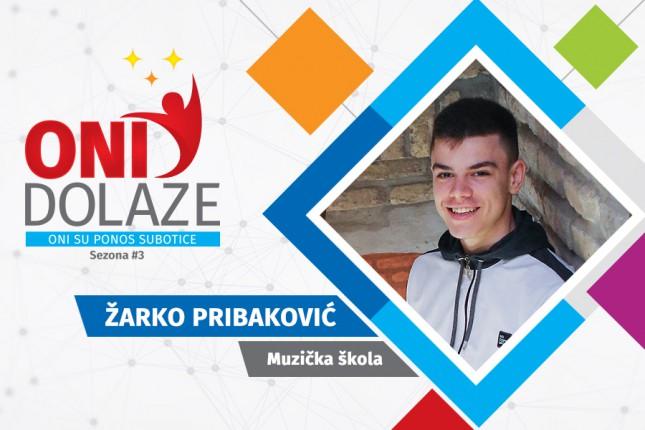 Oni dolaze: Žarko Pribaković, učenik Srednje muzičke škole