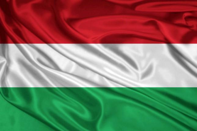 Mađarski pokret i DZVM o mogućem učešću na izborima