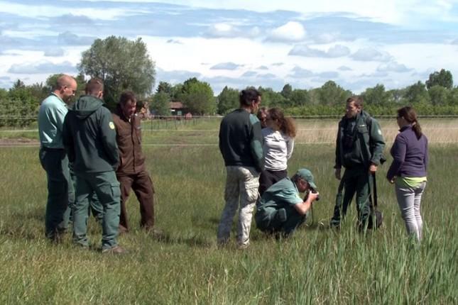 Galebova i čaplji sve više na zaštićenim područjima