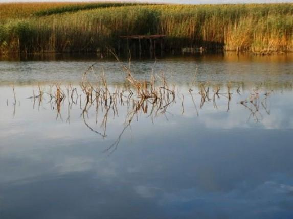 Uređenje jezera Skenderovo