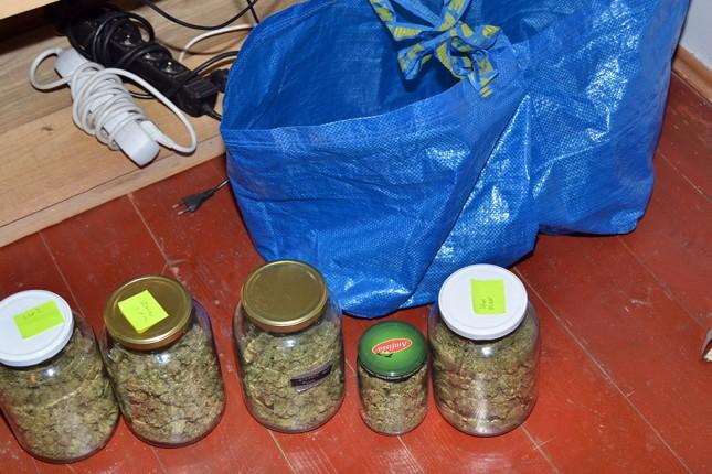 Otkrivena laboratorija za proizvodnju marihuane, uhapšen osumnjičeni