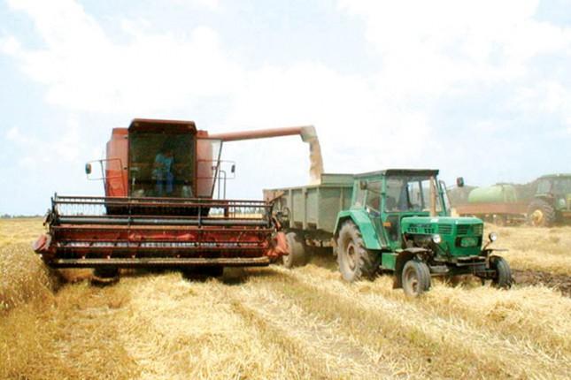 Pri kraju setva pšenice i berba kukuruza