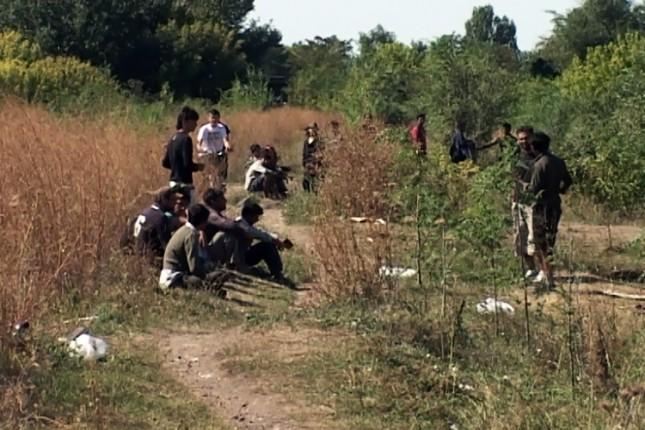 Uhvaćeno 16 migranata na Paliću i Subotici