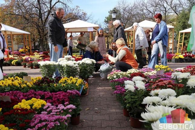 Na jesenjem sajmu cveća najviše hrizantema