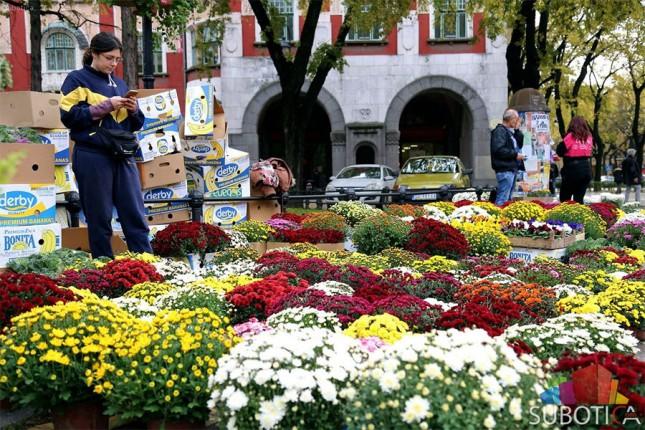 "Jesenji festival cveća ""Garden flora"" na Trgu Republike"