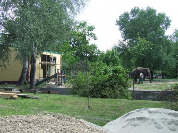Radovi u zoološkom vrtu na Paliću