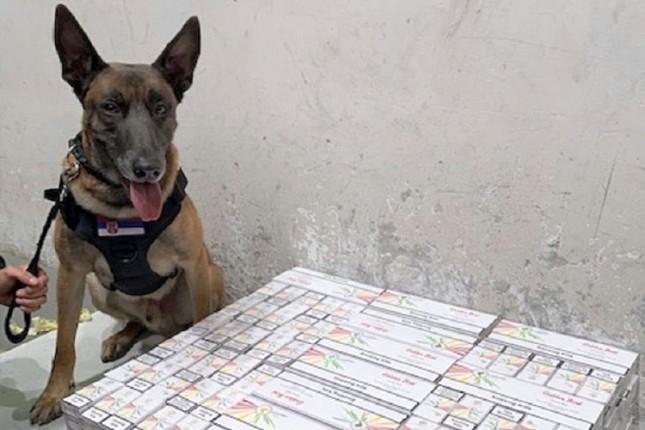 Švercovao cigarete, carinski pas ga otkrio, pa je priznao šta nelegalno prenosi
