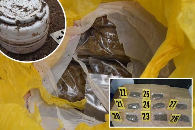 U šumi pronašli burad sa marihuanom, uhapšena dvojica osumnjičenih