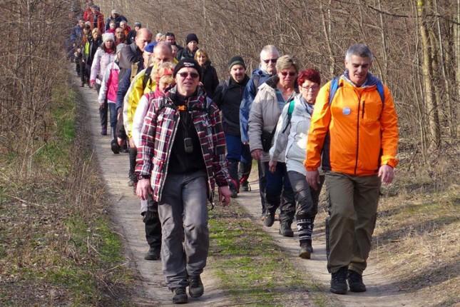 Pešačenje oko jezera Palić u sklopu obeležavanja Svetskog dana voda