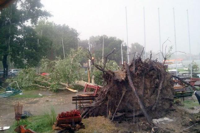Jako nevreme na Paliću čupalo drveće i prevrtalo plovila