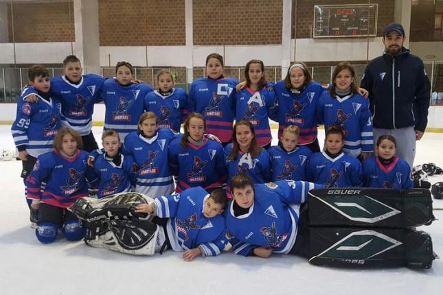 Hokej: Nastup mlađih selekcija u okviru juniorske lige i Prvenstva Mađarske