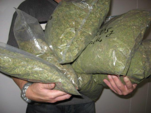 Sprečeno krijumčarenje 15kg marihuane