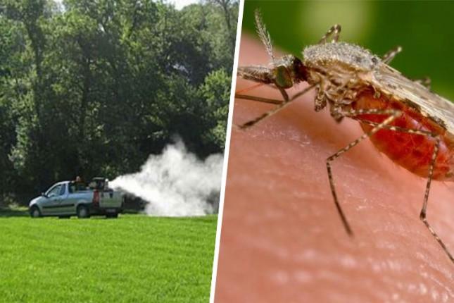 Nastavak akcije suzbijanja komaraca od ponedeljka