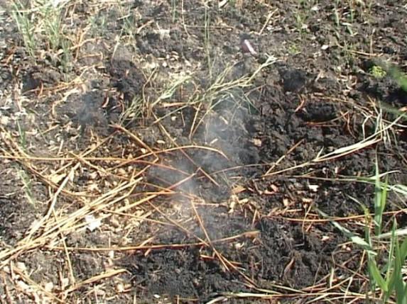 Rezultati analize zagađenog tla