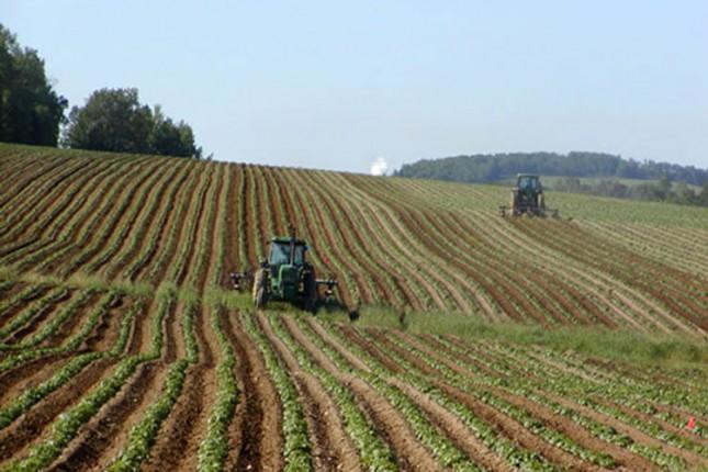 Poljoprivrednici traže smanjenje poreza i naknada