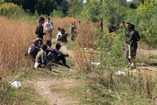 Policija uhvatila 19 maloletnih migranata