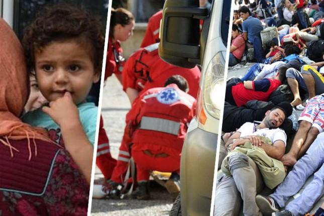 U poslednja tri meseca SHMP pružila pomoć za 80 migranata