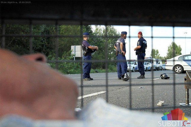 Strah na Horgošu: Polovina migranata misli da ih autobusi vraćaju u Siriju, ostali se plaše mina u Hrvatskoj