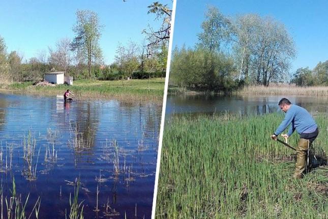 Zeleni Subotice: Nakon 15 godina jezero kod Bunarića ugledalo svetlost dana
