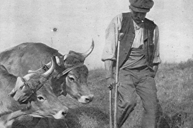 Predavanje Mirka Grlice o poslednjoj godini Prvog svetskog rata u Subotici