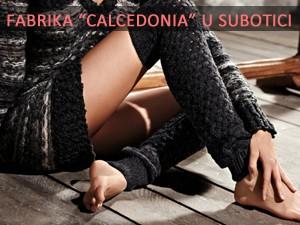 Kalcedonija zapošljava 1000 Subotičana