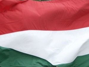 Rasprava o Pozorištu i u Mađarskom parlamentu