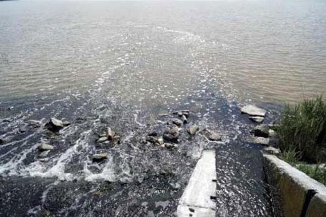 Sanacija jezera Palić - voda povremeno prozirna