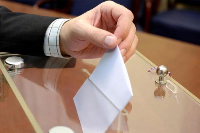 Danas su izbori za Nacionalne savete nacionalnih manjina